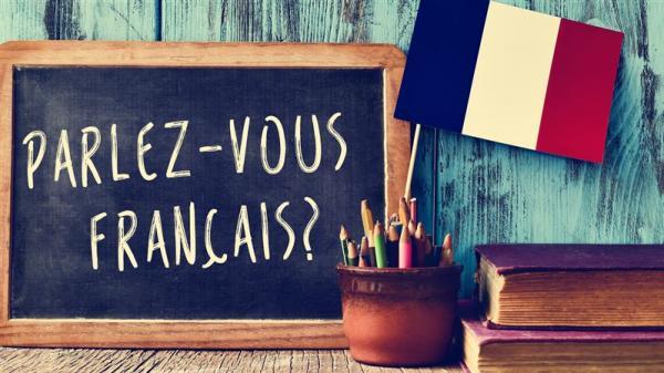 instrukcije-francoscine-ptuj