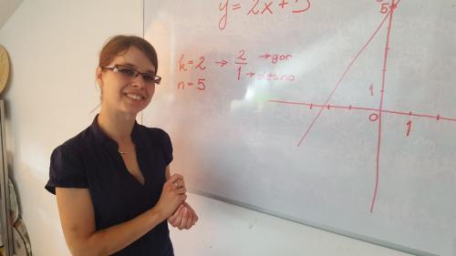 instrukcije-matematike-fimaznanje