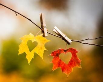 barvita-jesen-tecaji-anglescina-nemscina